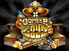 Золото Суслика в онлайн клубе
